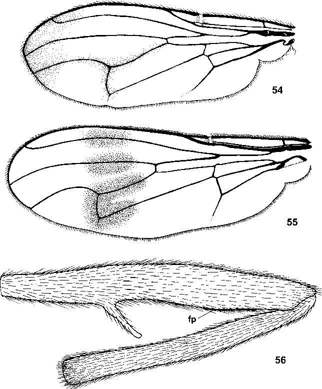 figure 54–56
