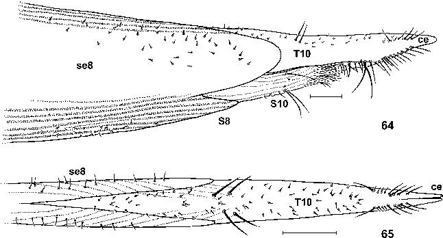 figure 64–65