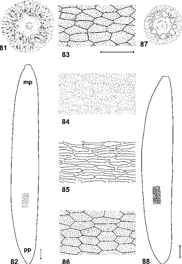 figure 81–88