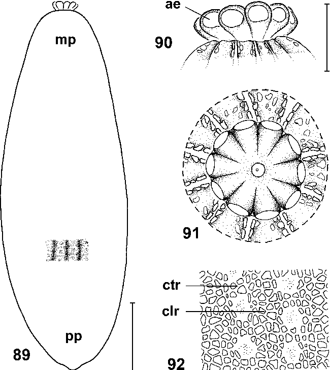 figure 89–92