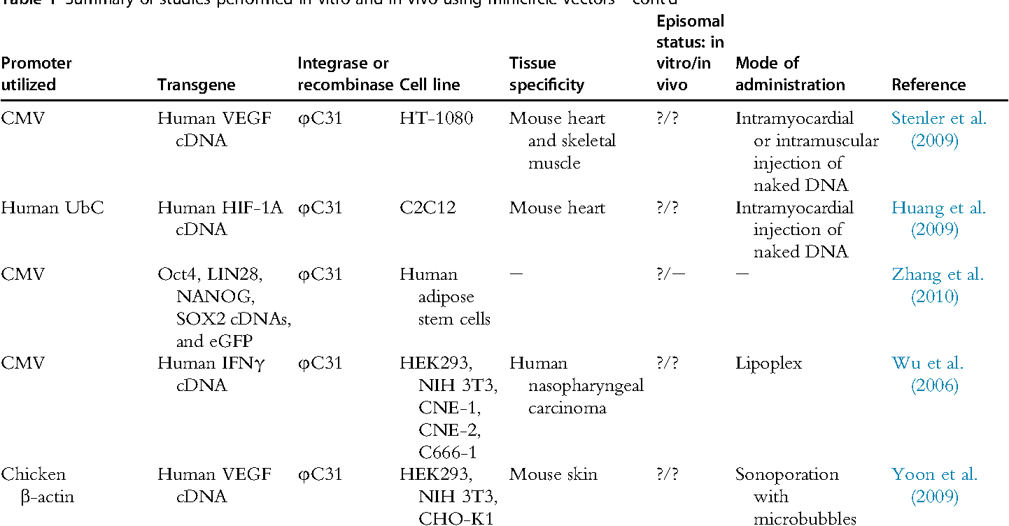 Figure 1 from Sustained expression from DNA vectors