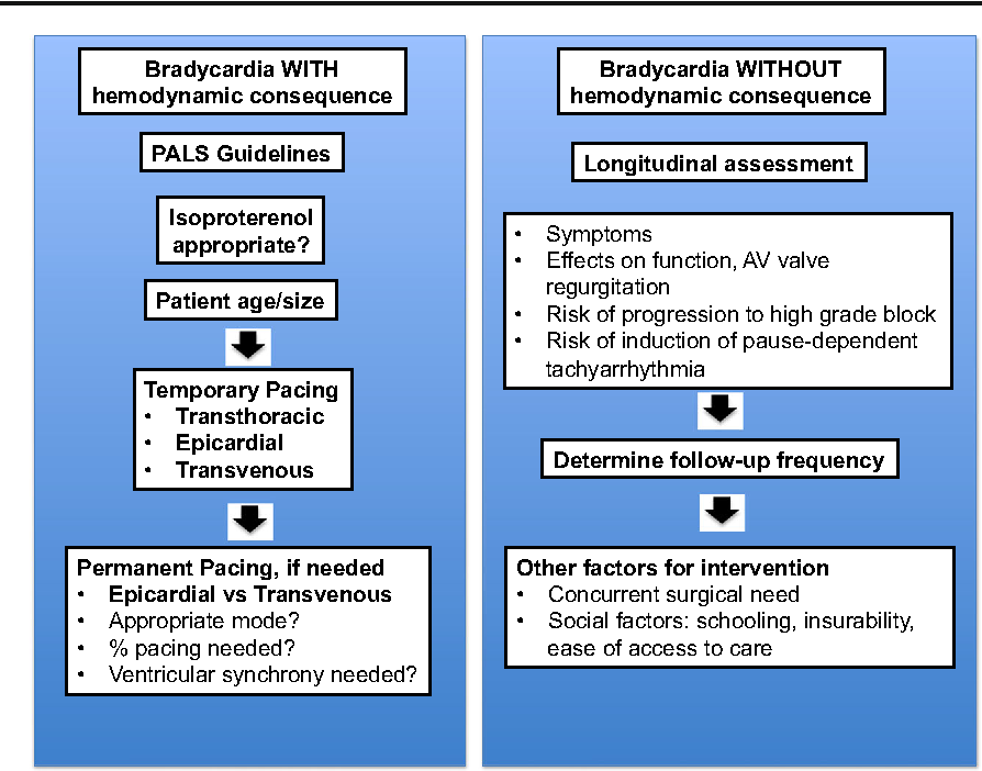 Evaluation and management of bradycardia in neonates and