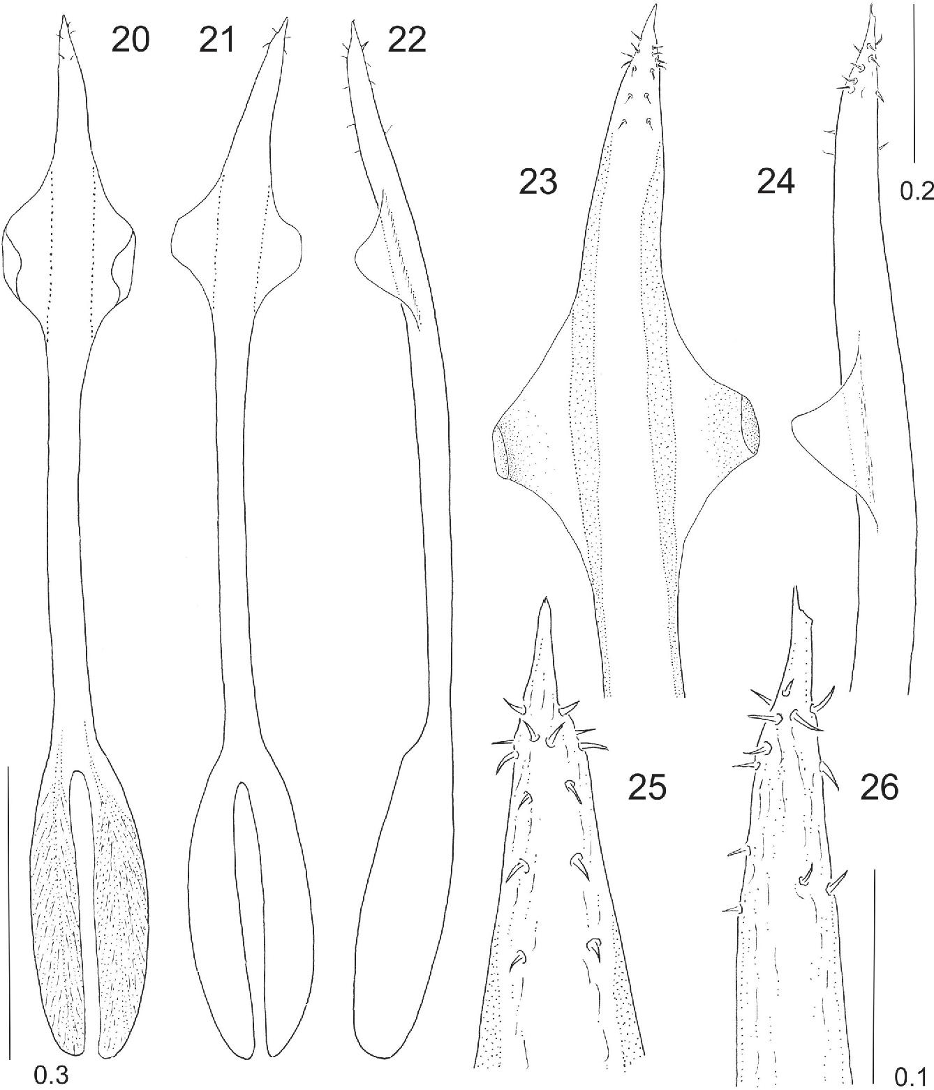 figure 20-26