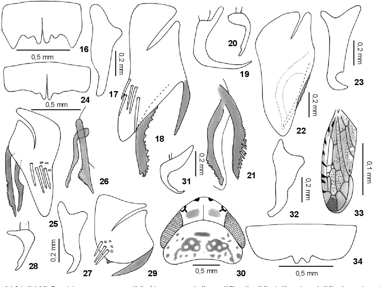 figure 24-28