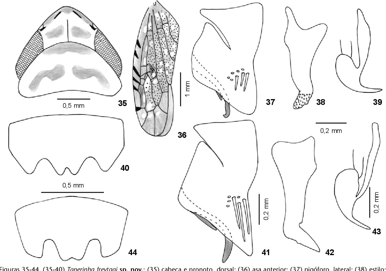 figure 29-34