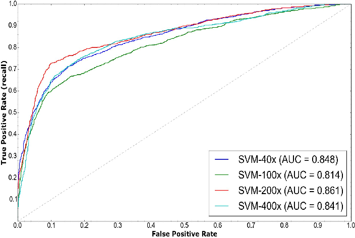 A Dataset for Breast Cancer Histopathological Image