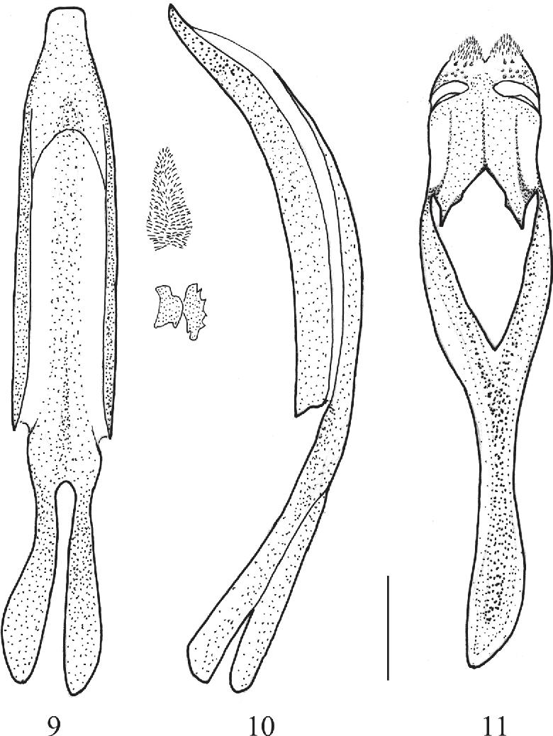 figure 9–11