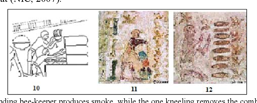 Figure 10 from Insects in ancient (Pharaonic) Egypt: a