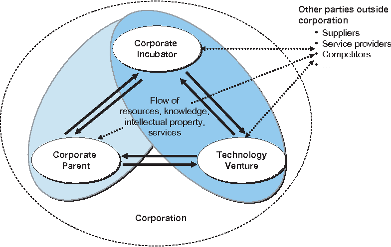 PDF] TOWARDS A RESOURCE-BASED VIEW OF CORPORATE INCUBATORS ...
