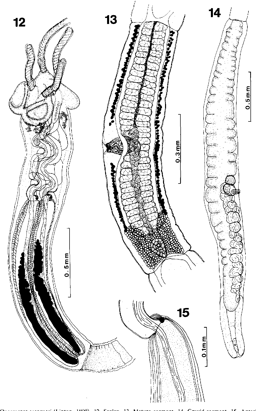 figure 12-15