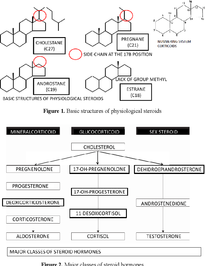 Reactions to steroids royal pharmaceuticals steroids