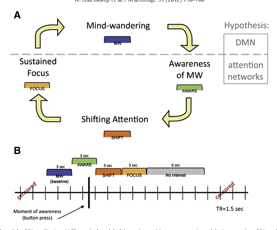Mind wandering and attention during focused meditation: A