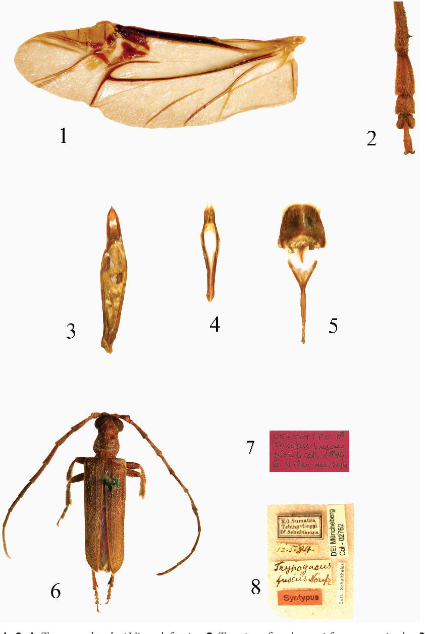 figure 1–8