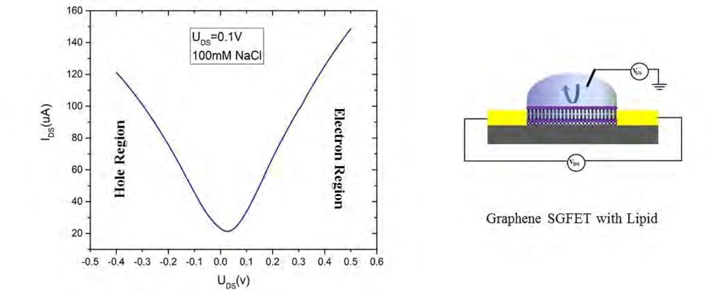 Figure 4 7 from Graphene based Solution Gated Field-Effect