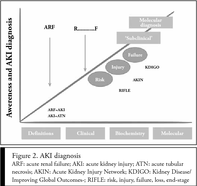 Figure 2 From Sepsis And Acute Kidney Injury Semantic Scholar