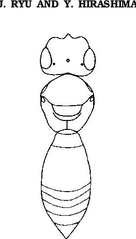 figure 14