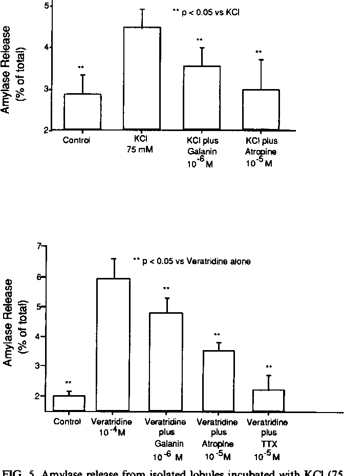 PDF] Galanin inhibits rat pancreatic amylase release via ...