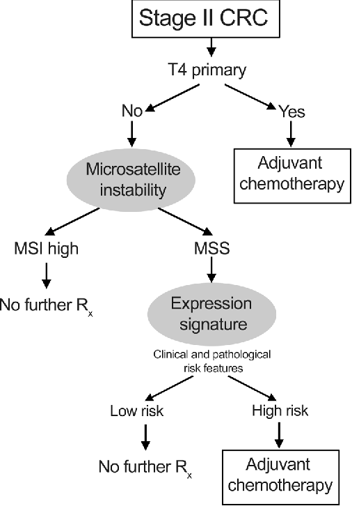 Figure 1 From Stage Ii Colon Cancer Semantic Scholar