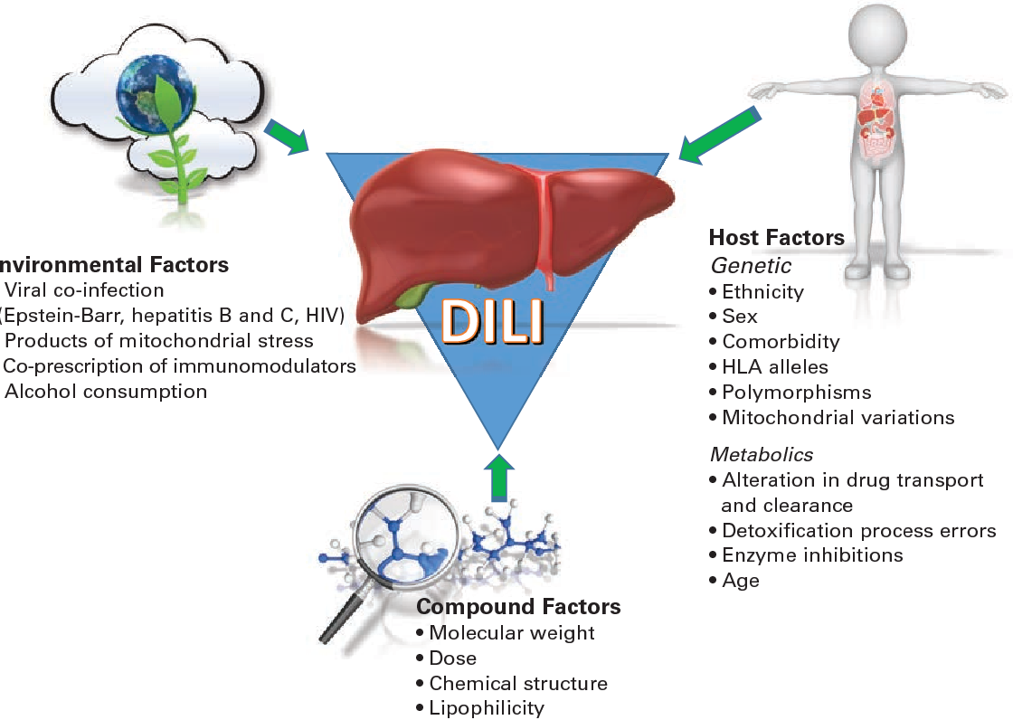 Drugs Associated With DILI