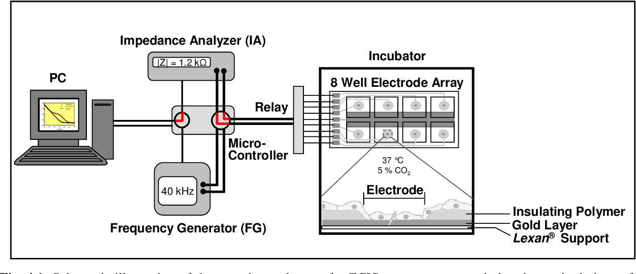 PDF] Electric manipulation and impedance analysis of adherent ...