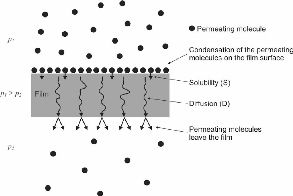 PDF] Preparation and characterization of potato starch films