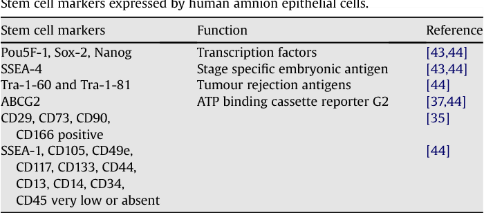 Table 1 from Human fetal membranes: a source of stem cells