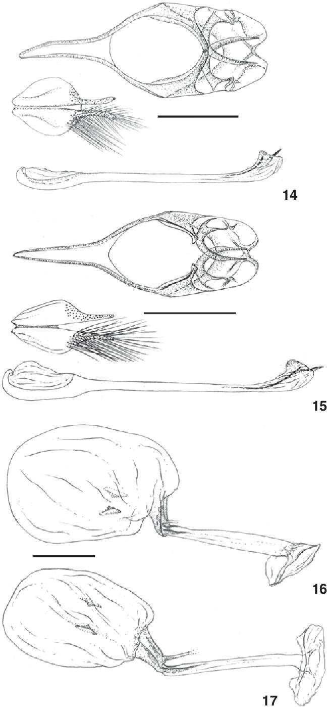 figure 14-17