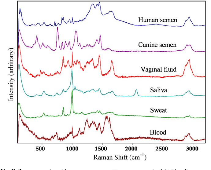 Analysis of body fluids for forensic purposes: from
