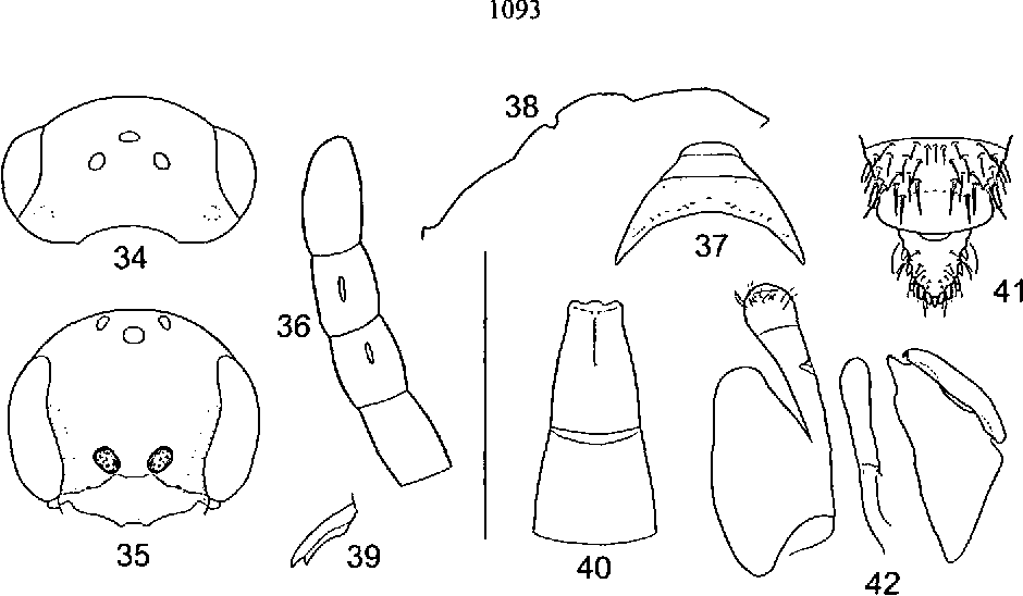 figure 34-42