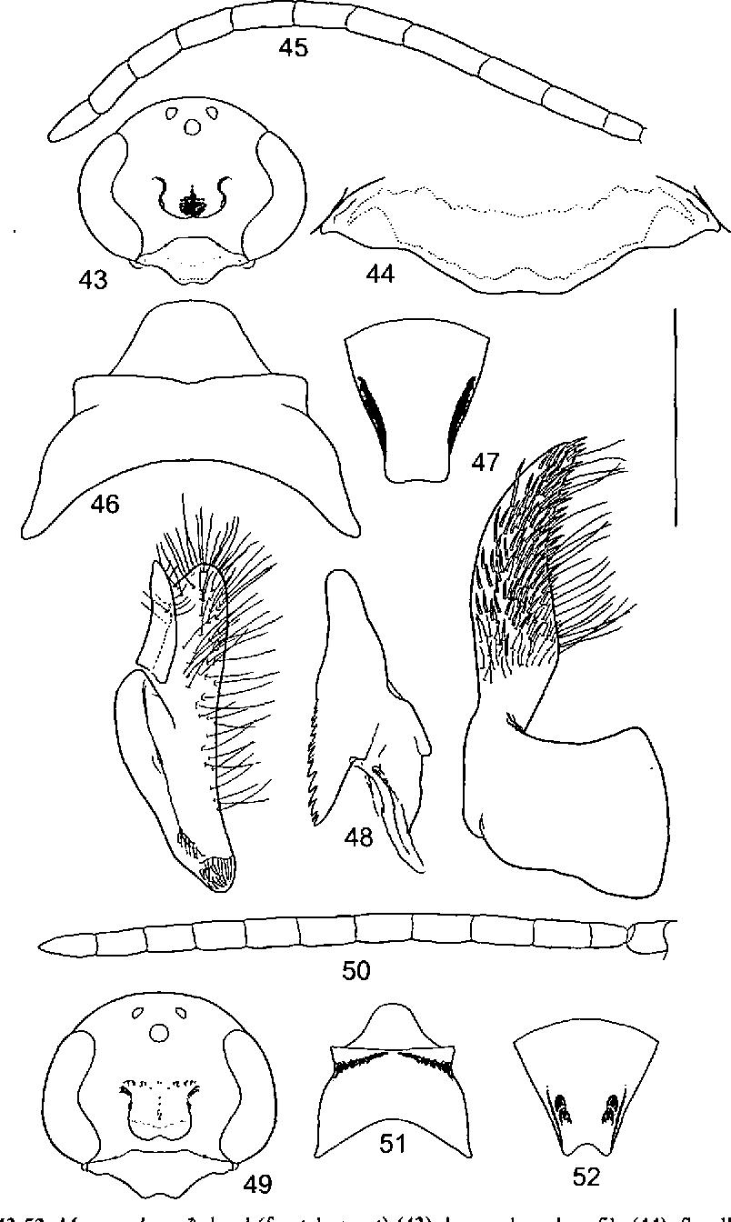 figure 43-52