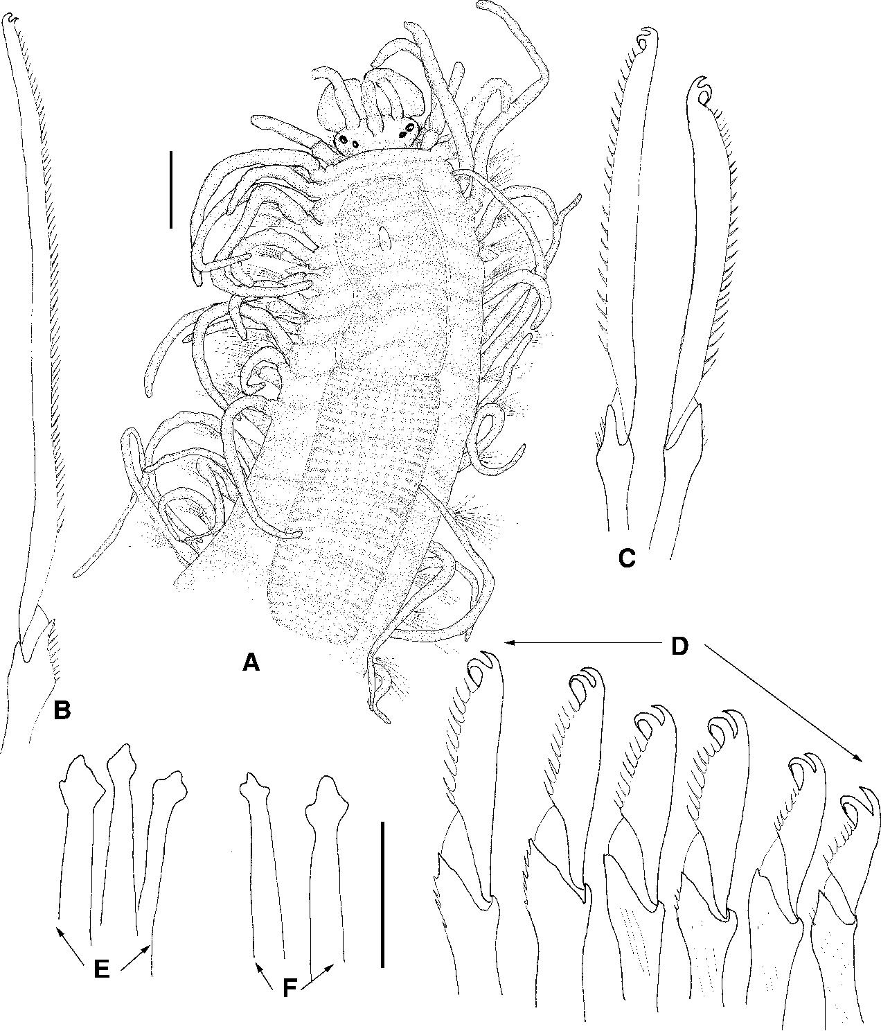 figure 74
