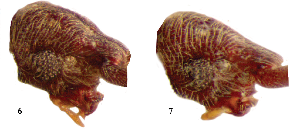 figure 6–7