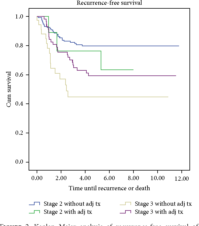 Pdf High Risk Stage 2 And Stage 3 Colon Cancer Predictors Of Recurrence And Effect Of Adjuvant Therapy In A Nonselected Population Semantic Scholar