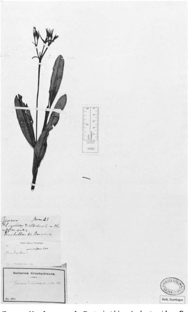 figure 51