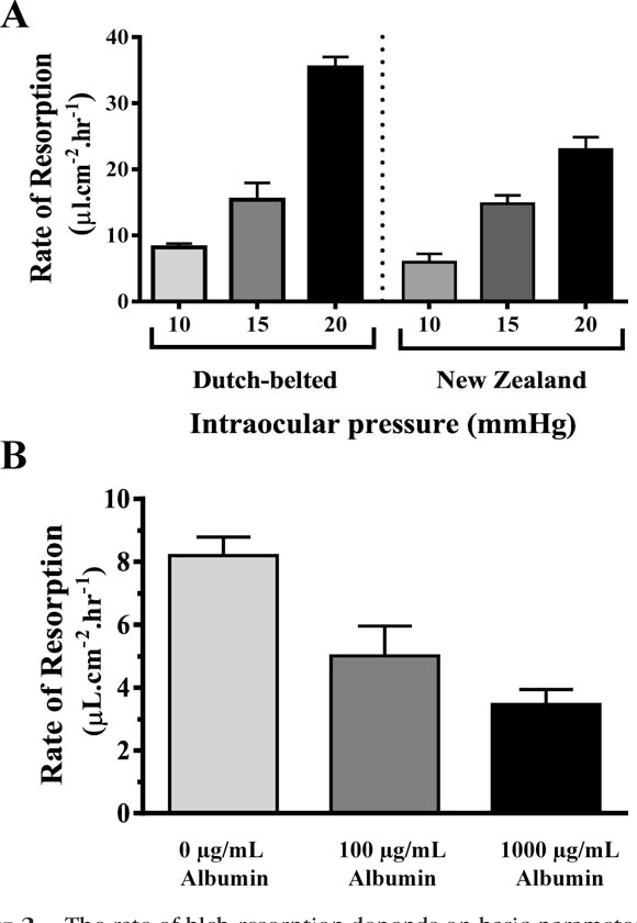 Figure 2 From Vascular Endothelial Growth Factor Modulates