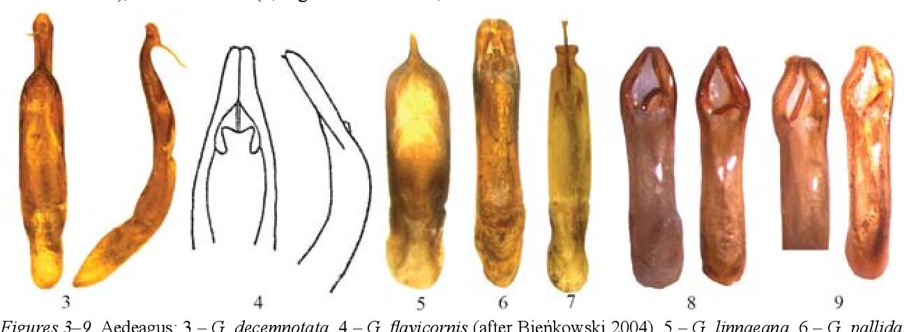 figure 3–9