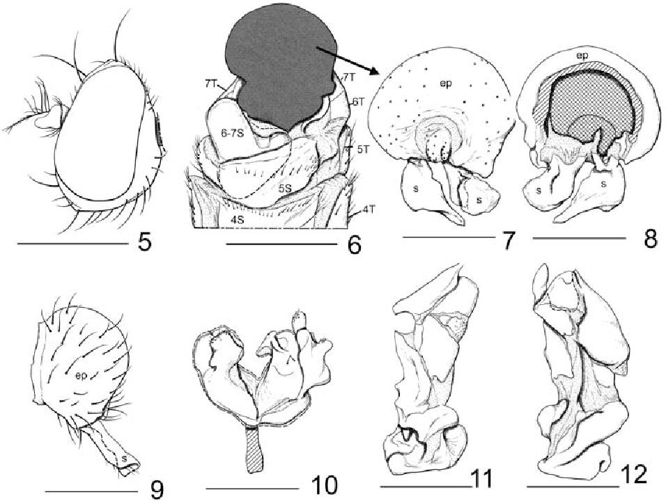 figure 5–12