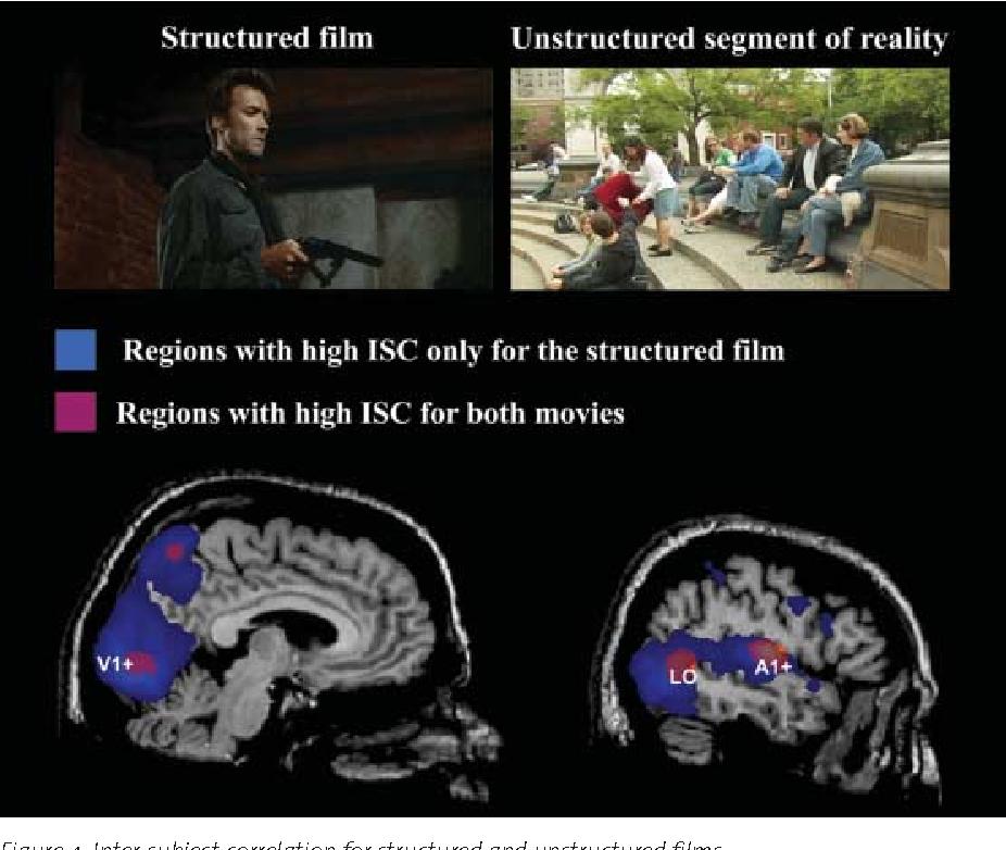 PDF] Neurocinematics: The Neuroscience of Film - Semantic