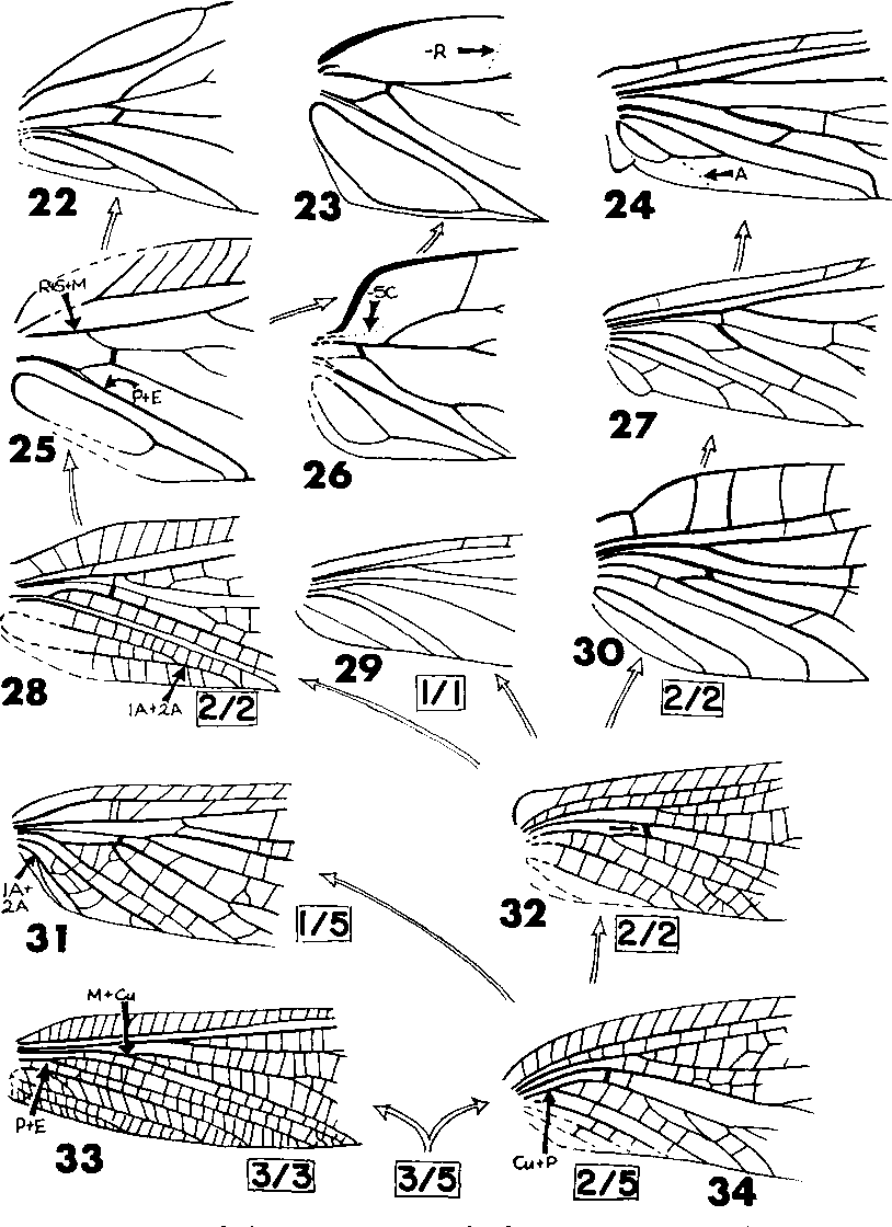 figure 22-34