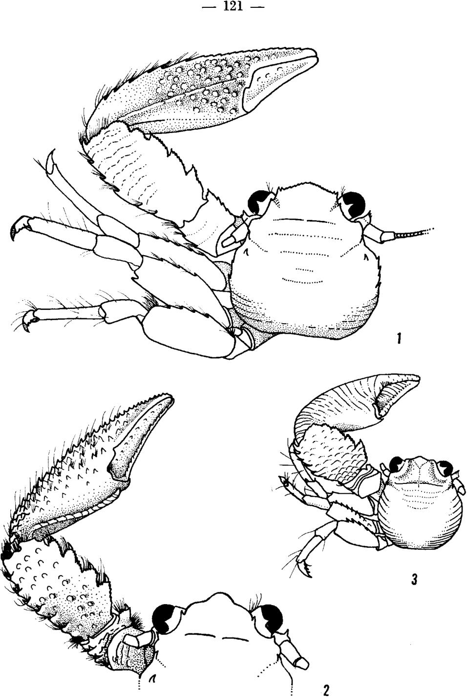 figure 1-3