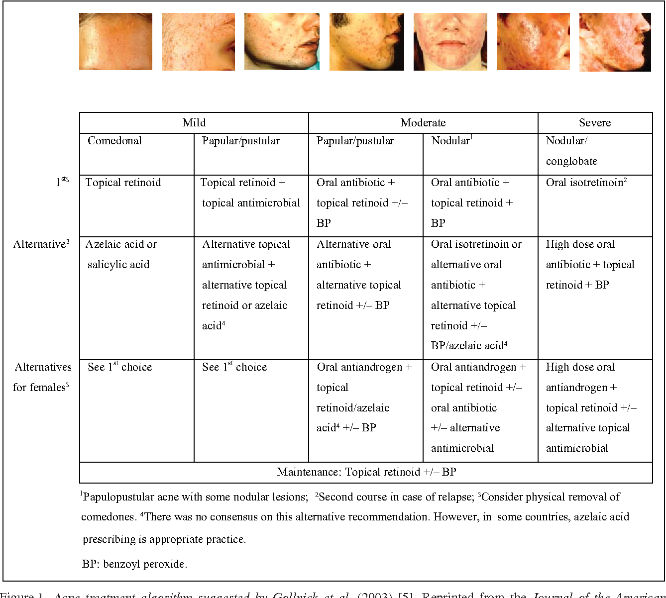 Figure 1 From European Recommendations On The Use Of Oral Antibiotics For Acne Semantic Scholar