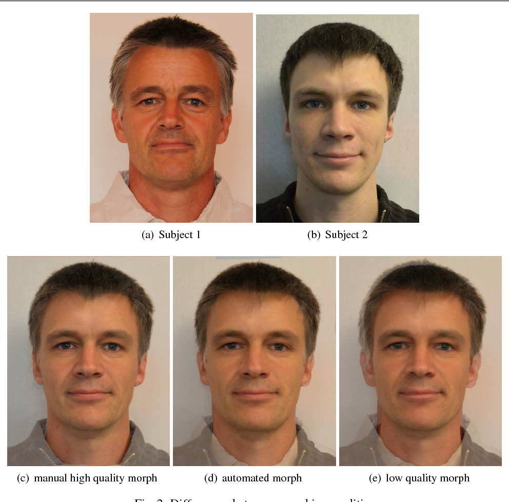 Biometric Systems under Morphing Attacks: Assessment of