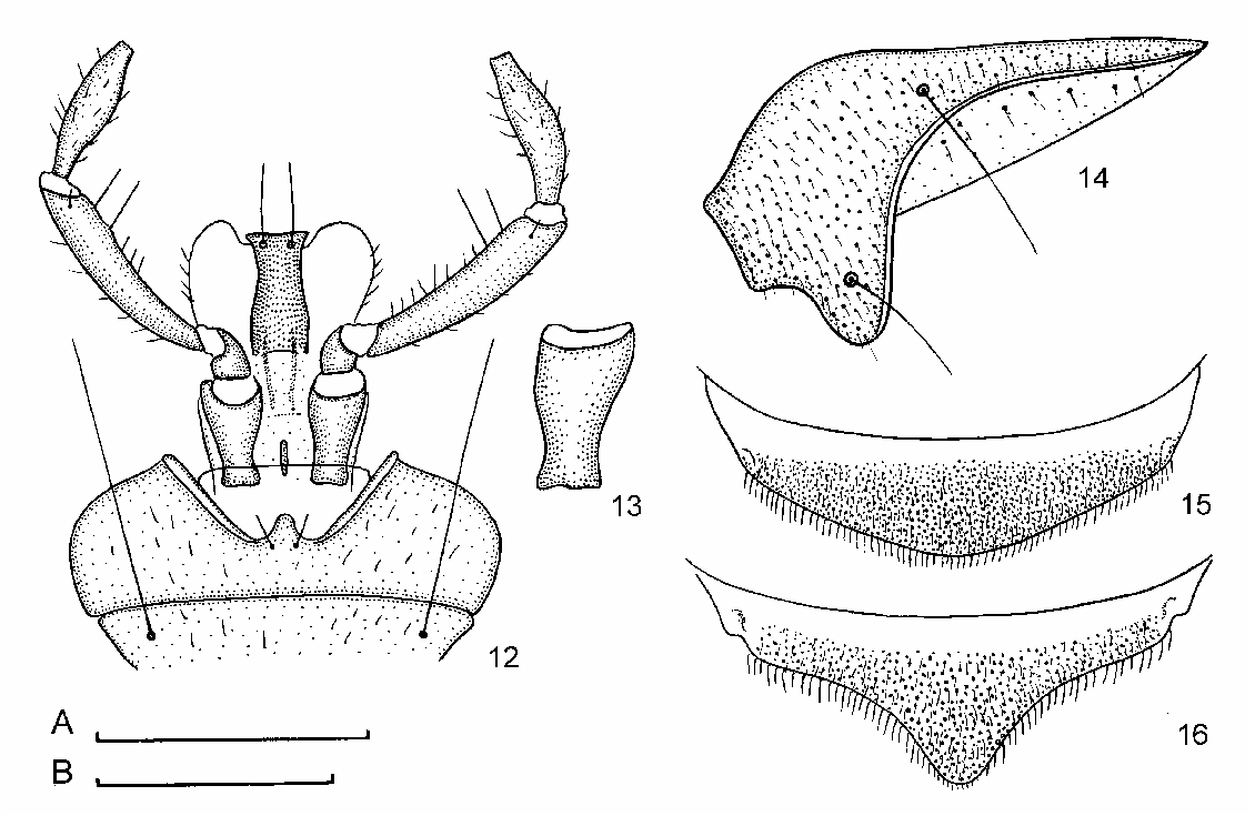 figure 12–16