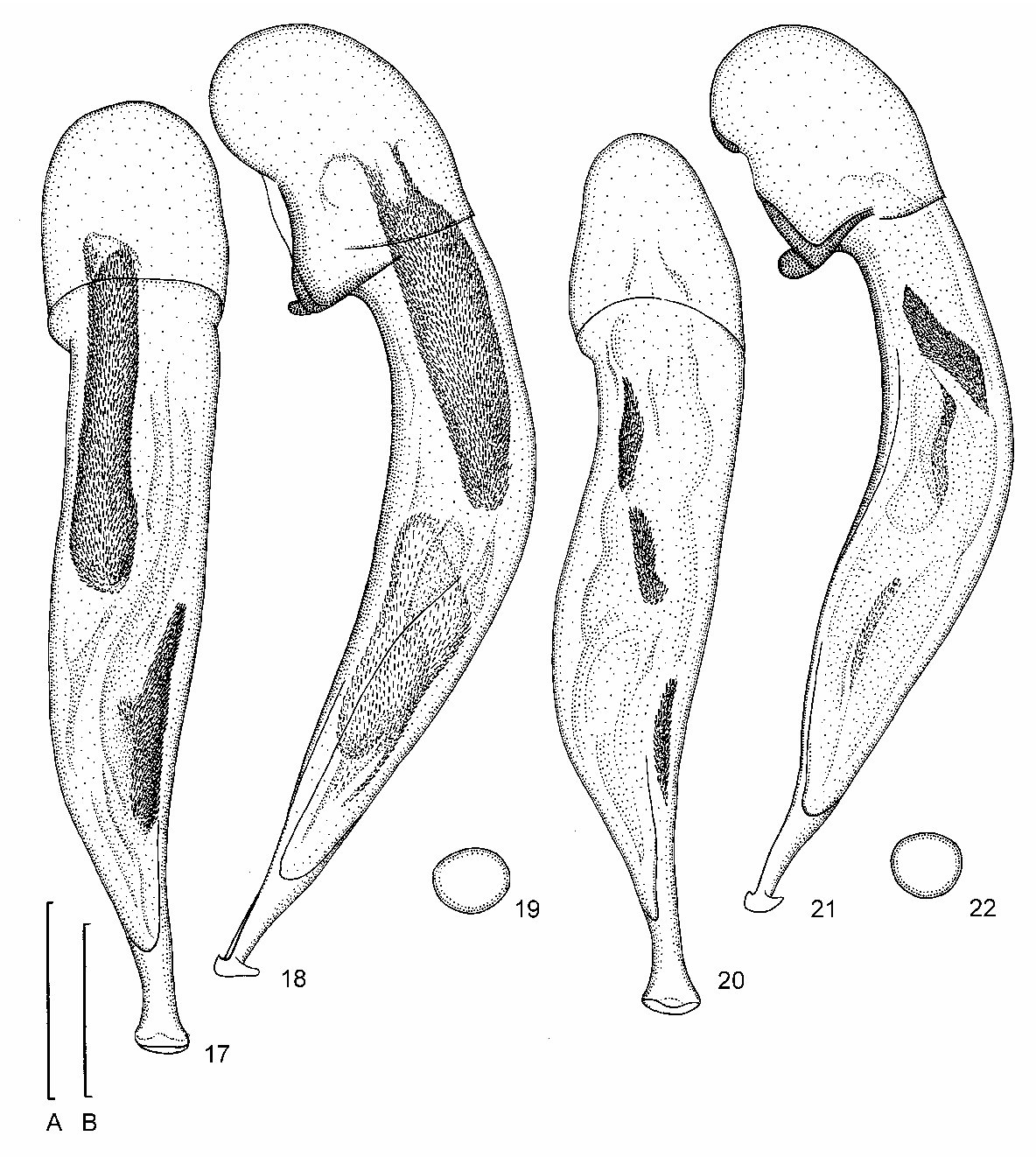 figure 17–22
