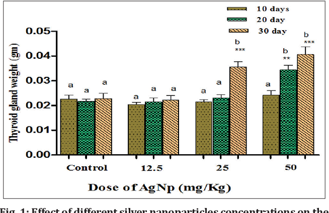 Effects Of Silver Nanoparticles On Thyroid Gland Structure And