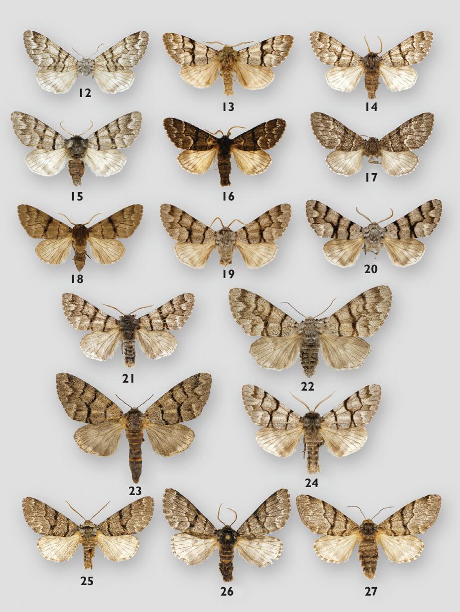 figure 12-27
