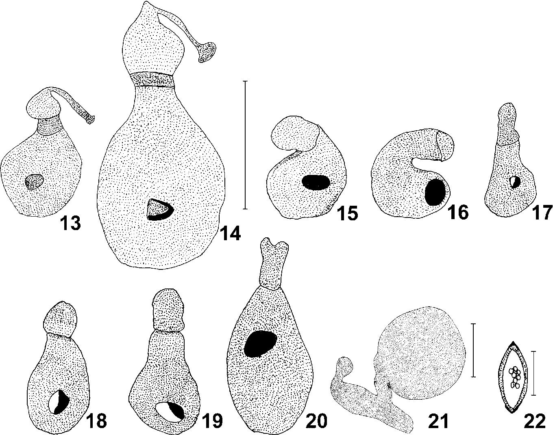 figure 13-22