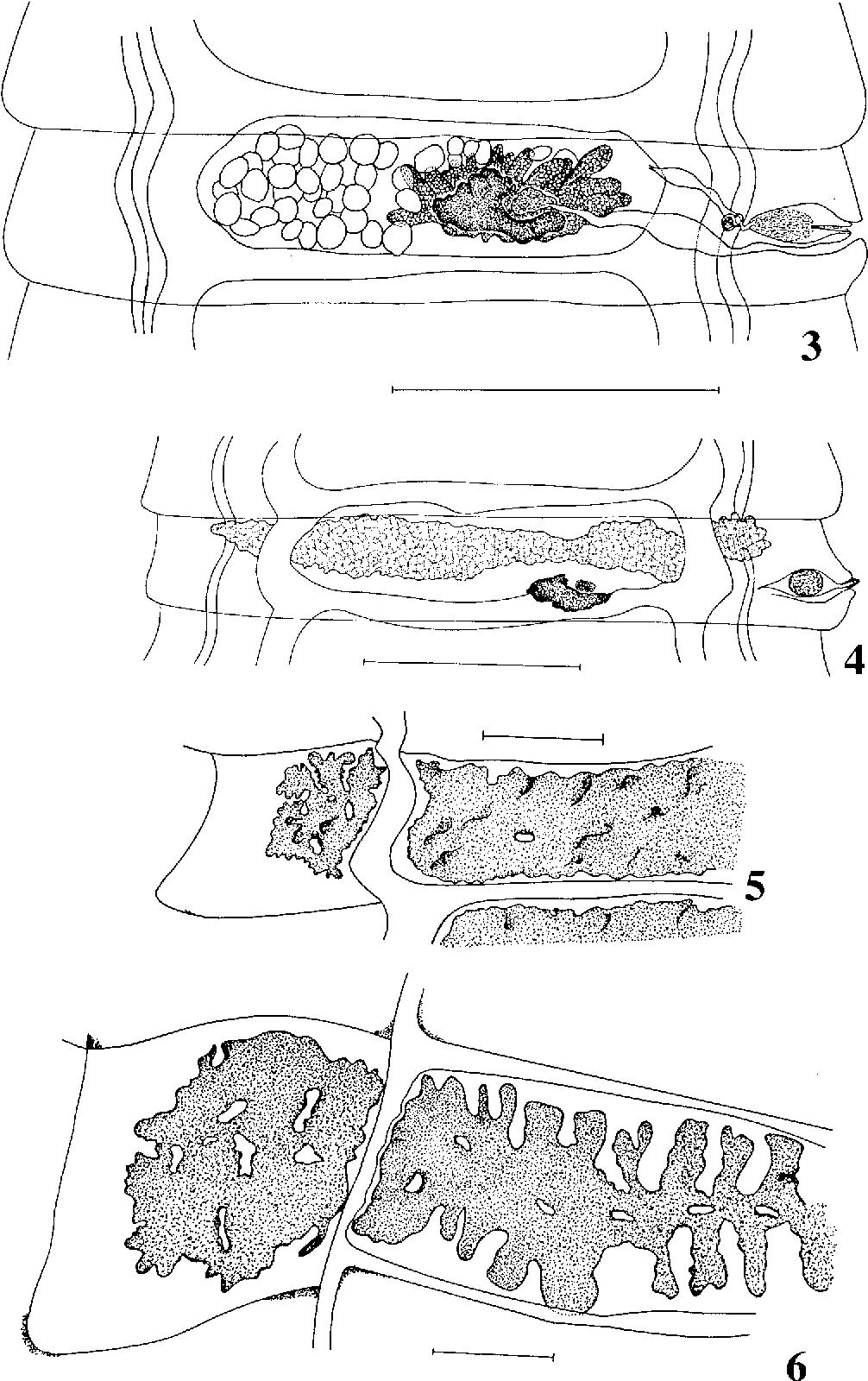 figure 3–6
