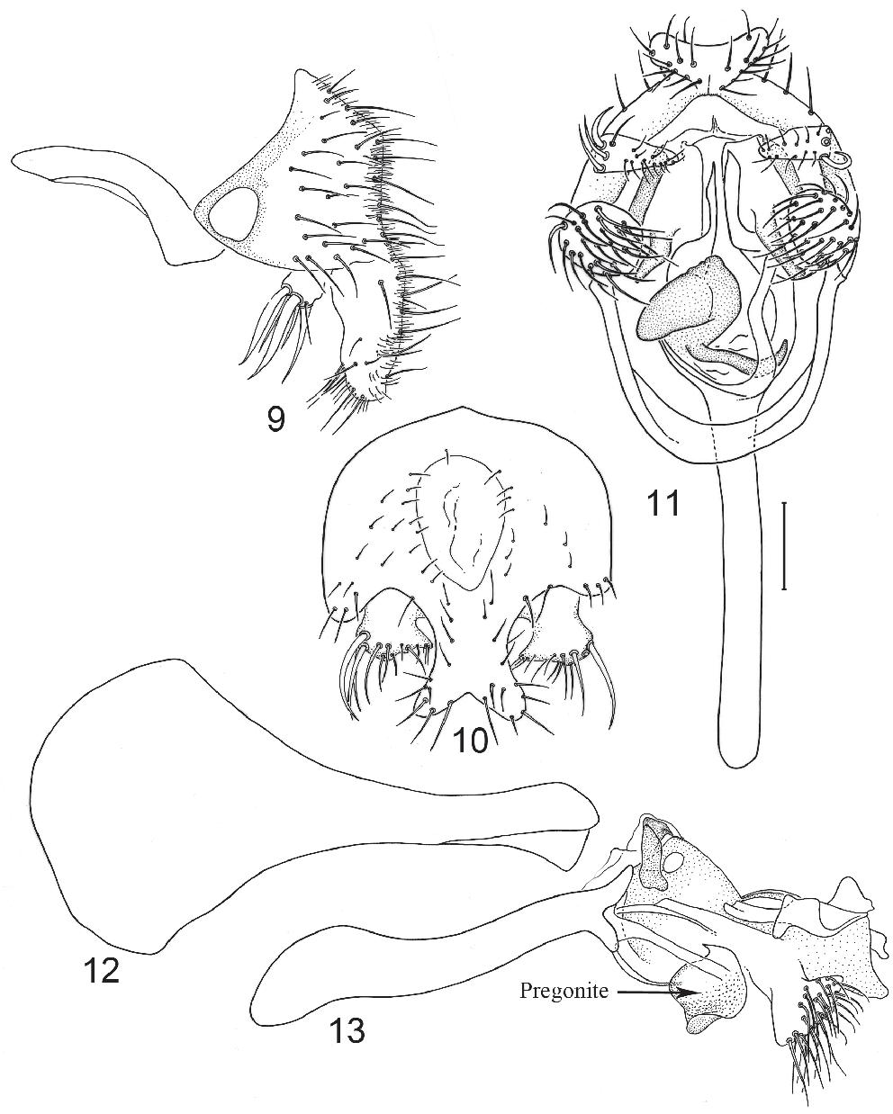 figure 9–13