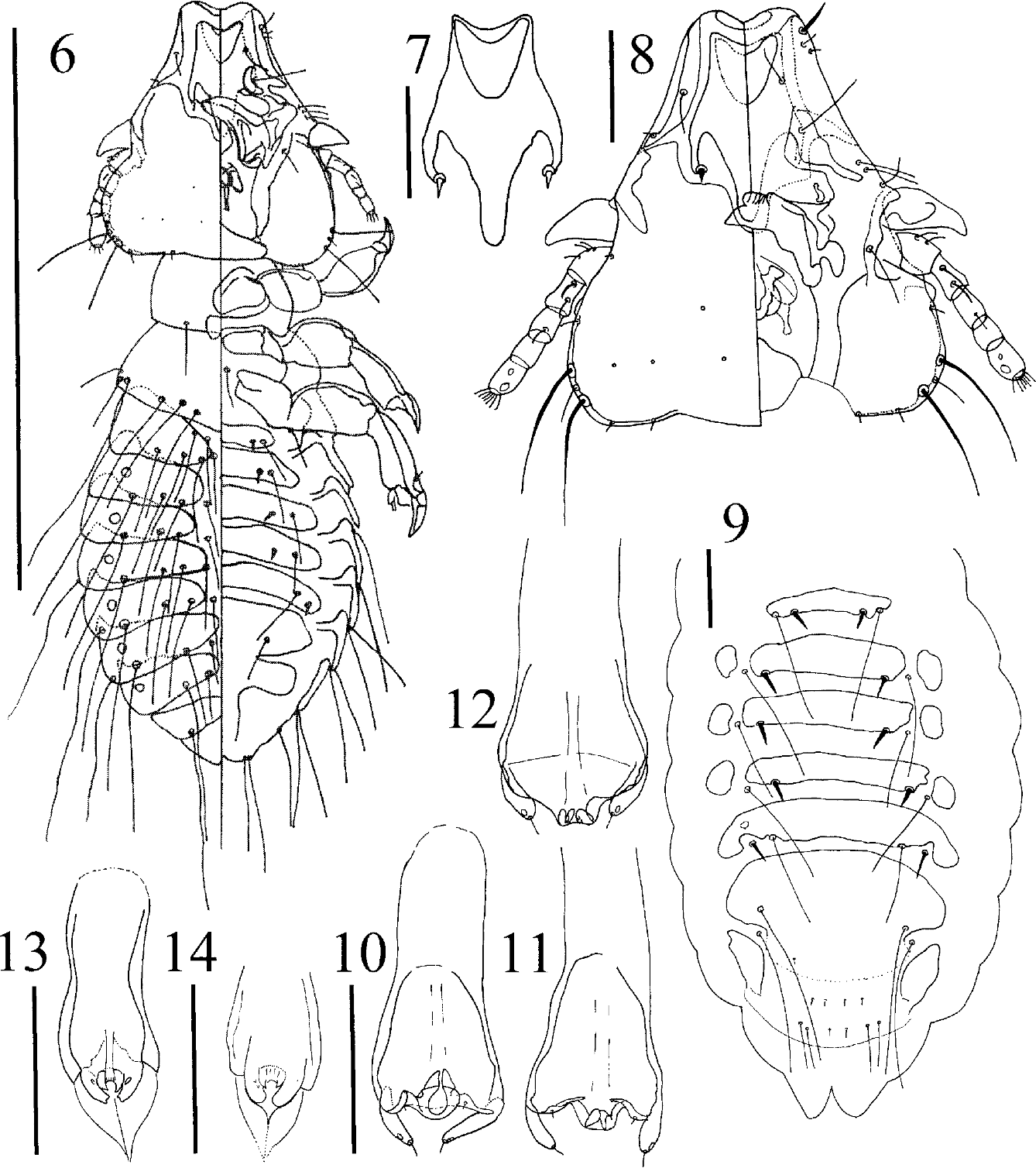figure 6–14